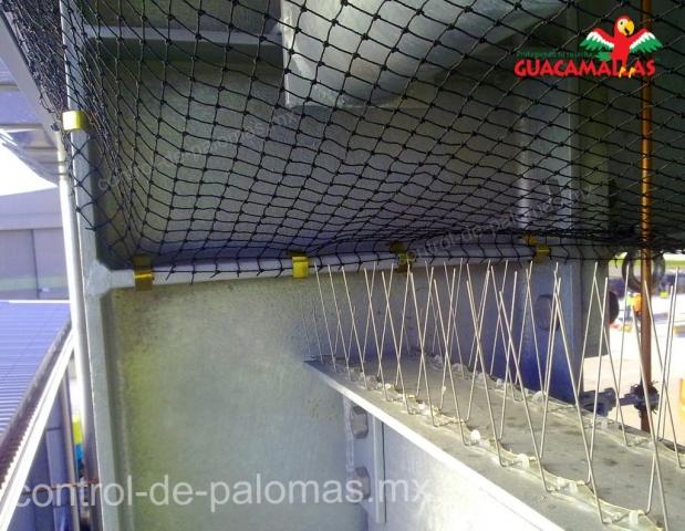 Control de palomas GUACAMALLAS evita el acceso a las aves indeseadas