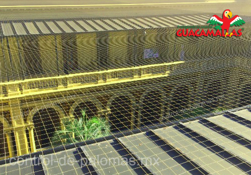 mantén tus patios libres de aves indeseadas con malla control de palomas