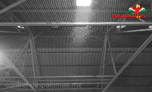 GUACAMALLAS malla control de palomas en interiores