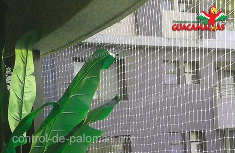 Mantenga alejadas a las palomas con malla control de palomas GUACAMALLAS